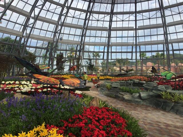 Vinpearl Land Nha Trang mở cửa Đồi vạn hoa với hàng ngàn kỳ hoa, dị thảo - Ảnh 4.