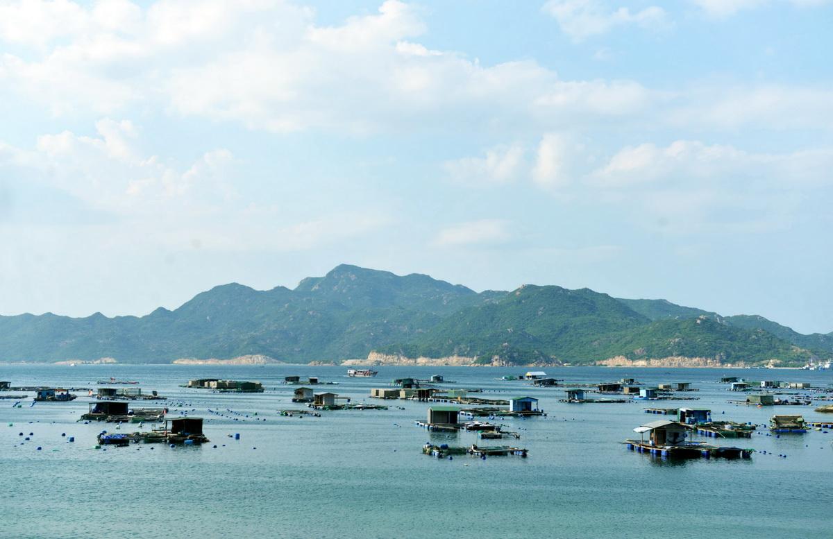 Đi chơi đảo Bình Ba từ Sài Gòn chỉ với 2 triệu đồng - Ảnh 1.
