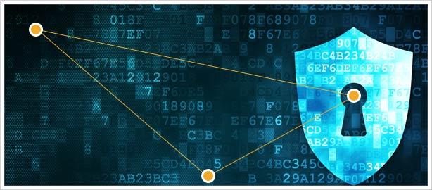 Bảo mật không cần mật khẩu - Ảnh 1.