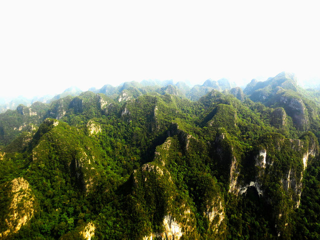 Bài thi Bản sắc Việt: Đến Phong Nha ngắm rừng bách xanh - Ảnh 1.