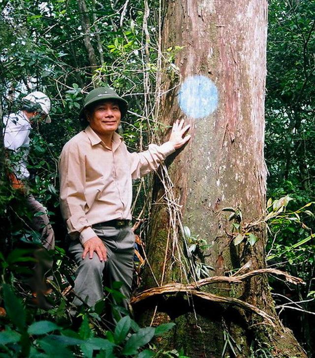 Bài thi Bản sắc Việt: Đến Phong Nha ngắm rừng bách xanh - Ảnh 2.