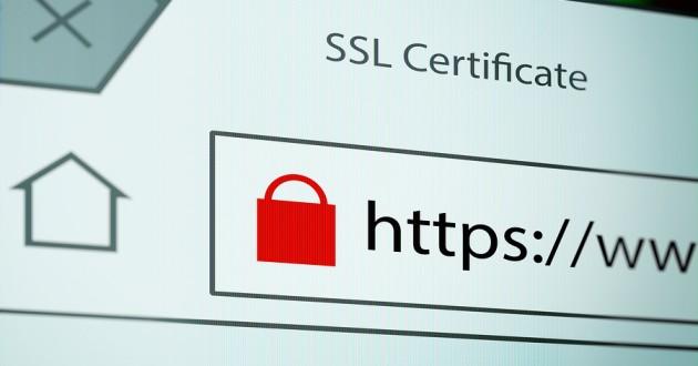 Google thực hiện chính sách bảo mật HSTS cho 45 tên miền cao cấp nhất - Ảnh 1.