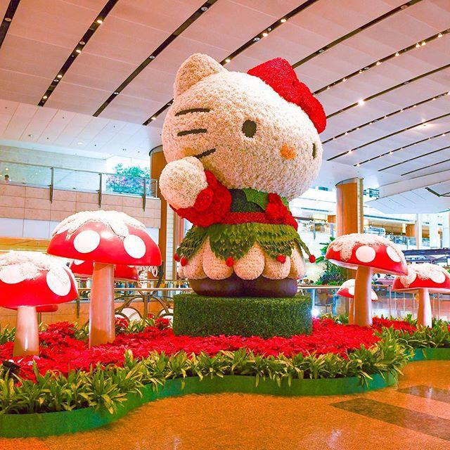 Singapore rực rỡ mùa lễ hội cuối năm - Ảnh 1.