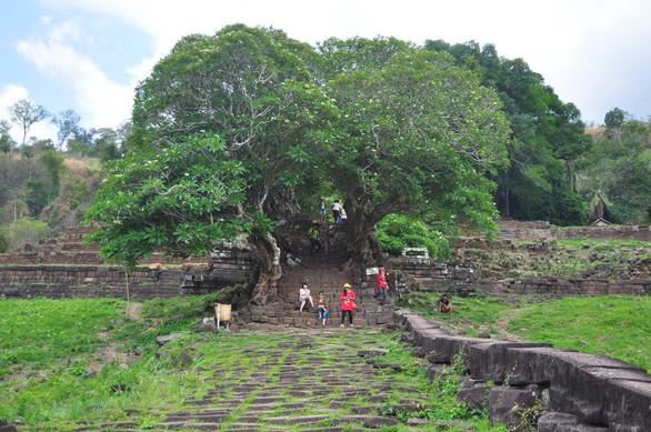 Wat Phou một thời vang bóng - Ảnh 6.