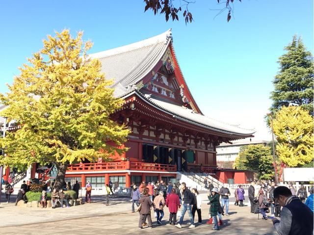 Đi Nhật Bản ngắm 'mùa thu lá bay' chỉ với 21 triệu - Ảnh 1.