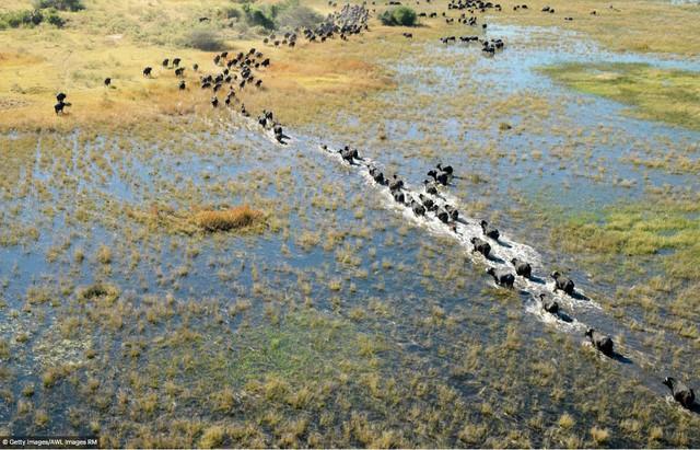 Ghé thăm danh lam thắng cảnh UNESCO qua ảnh - Ảnh 13.