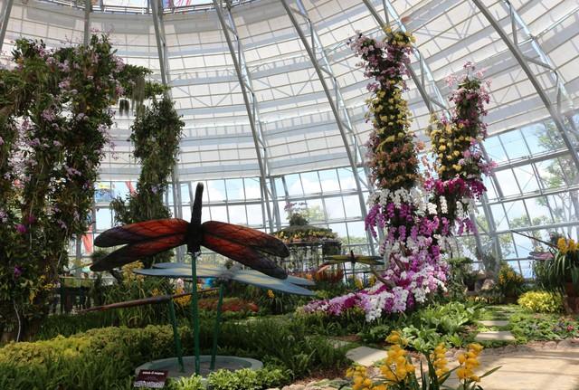Vinpearl Land Nha Trang mở cửa Đồi vạn hoa với hàng ngàn kỳ hoa, dị thảo - Ảnh 1.