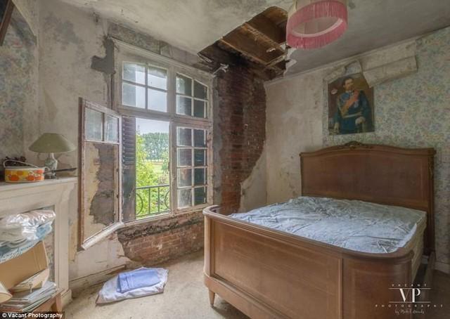 Tham quan căn nhà bị bỏ hoang 20 năm ở Pháp giá 3 tỉ đồng - Ảnh 6.