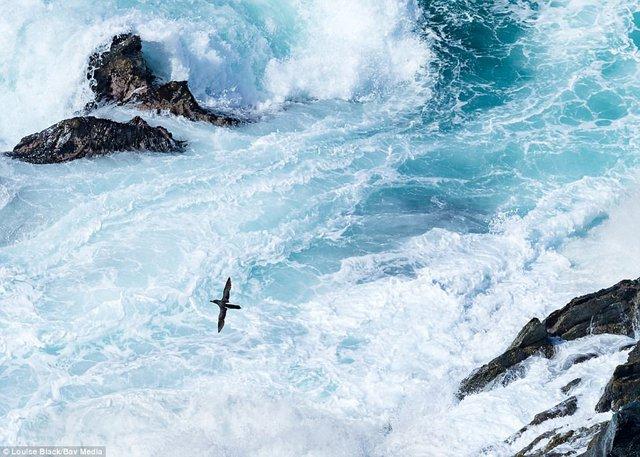 Thiên nhiên nước Anh đẹp nao lòng qua ảnh chụp - Ảnh 3.