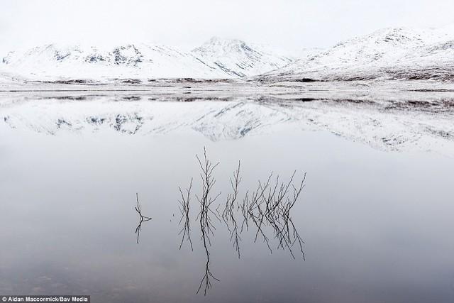 Thiên nhiên nước Anh đẹp nao lòng qua ảnh chụp - Ảnh 8.