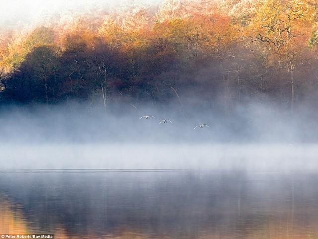 Thiên nhiên nước Anh đẹp nao lòng qua ảnh chụp - Ảnh 9.