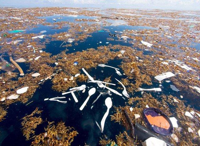 Rác thải làm ô nhiễm biển ở đảo du lịch nổi tiếng - Ảnh 2.