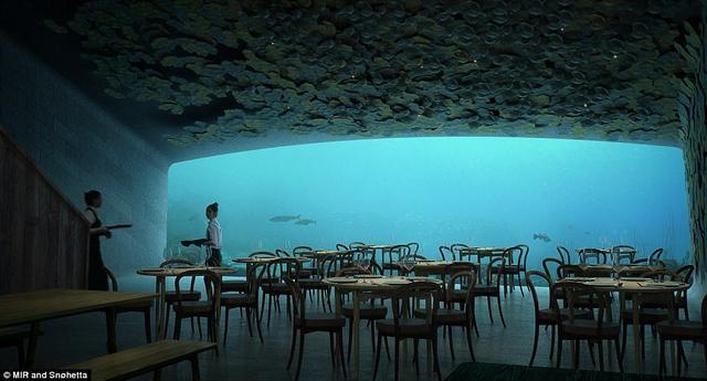 Ăn ở nhà hàng nửa dưới nước, nửa trên bờ có gì vui? - Ảnh 2.