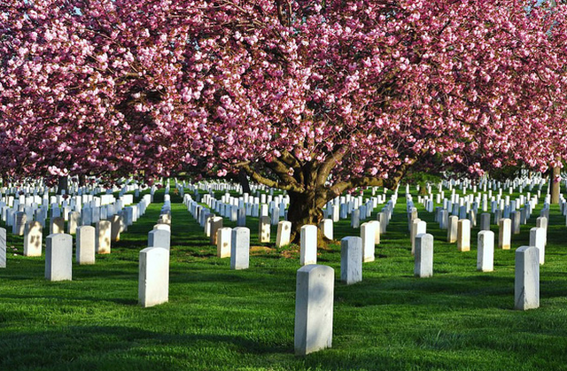Những nghĩa trang nên đến thăm... trước khi chết! - ảnh 8