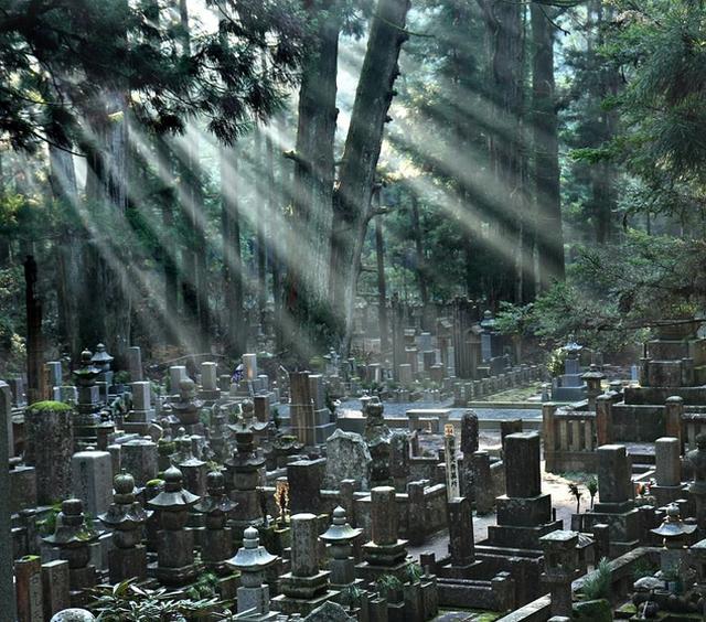 Những nghĩa trang nên đến thăm... trước khi chết! - ảnh 5