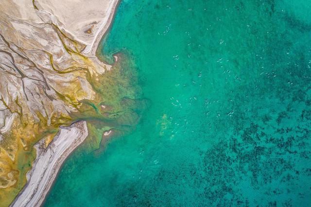 Choáng ngợp 17 ảnh sinh vật hoang dã nhìn từ trên không - Ảnh 5.