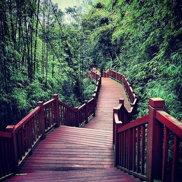10 lý do để bạn vi vu ở Đài Loan - Ảnh 8.