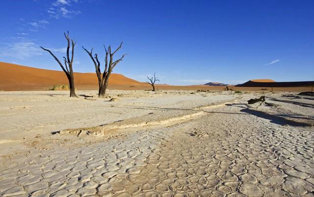 7. Vùng địa chất đất sét mặn ở Sossusvlei (Namibia) được bao quanh bởi những cồn cát cao màu nâu đỏ nằm ở phía nam sa mạc Namib, là địa điểm du lịch nổi tiếng thuộc công viên Namib-Naukluft.
