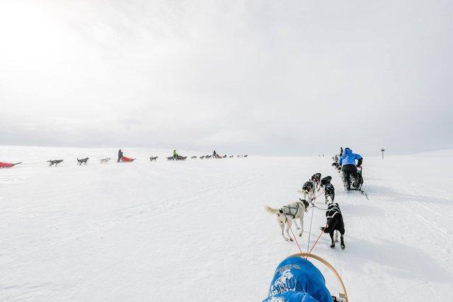 Thám hiểm Bắc Cực cùng chàng trai khoái phiêu lưu Hoàng Lê Giang - Ảnh 7.