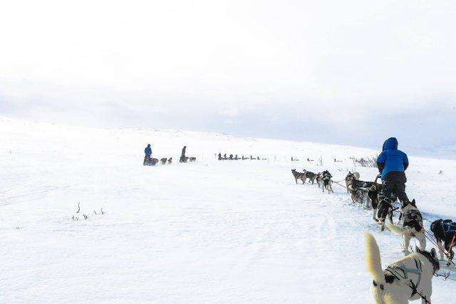 Thám hiểm Bắc Cực cùng chàng trai khoái phiêu lưu Hoàng Lê Giang - Ảnh 8.