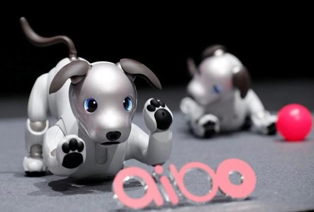 Sony ra mắt chó robot mới ứng dụng trí tuệ nhân tạo - Ảnh 1.