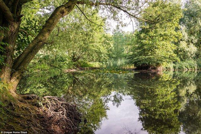 Thăm căn nhà 500 năm tuổi nằm giữa rừng sâu ở Anh - Ảnh 12.