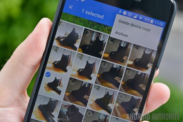 Google Photos có thể nhận diện thú cưng của bạn - Ảnh 1.