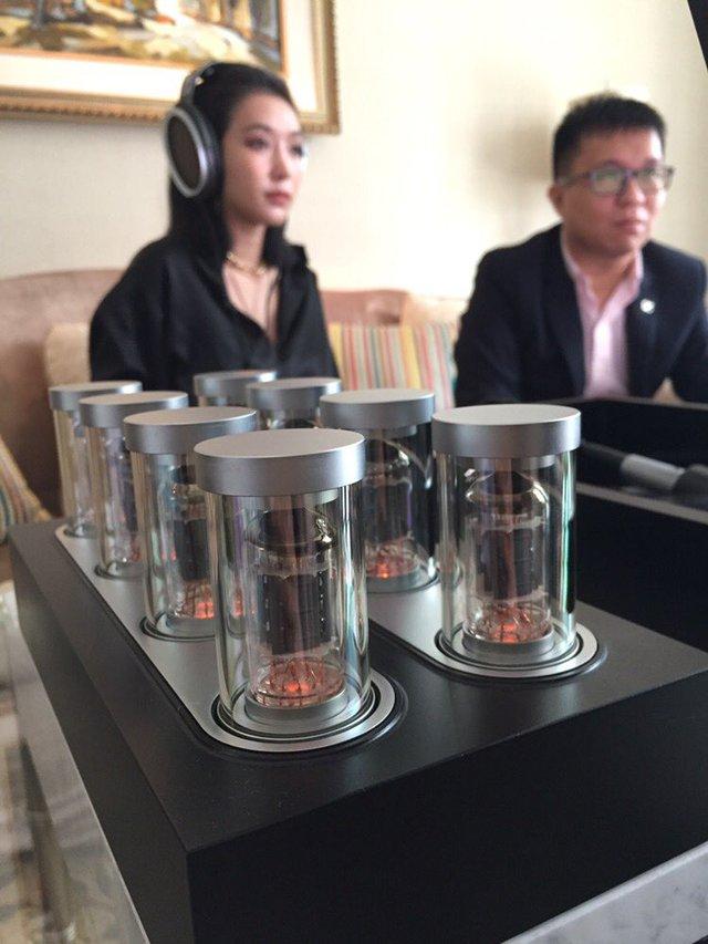Tai nghe trị giá 1,6 tỷ đồng về Việt Nam - Ảnh 3.