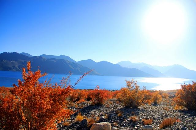 Lặng người với màu xanh huyền ảo ở hồ Pangong - Ảnh 4.