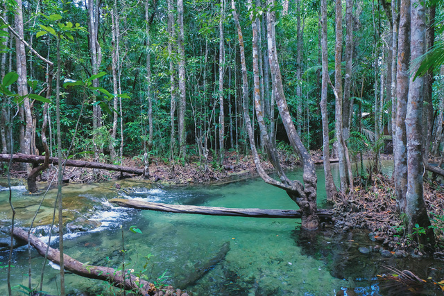 Đắm mình nơi hồ nước thần tiên ở Khlong Thom - Ảnh 1.