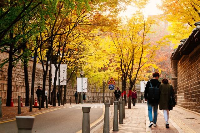 Du lịch Việt giảm giá 50% nhiều tour du lịch mùa thu ở châu Âu, Nhật, Hàn Quốc... - Ảnh 1.