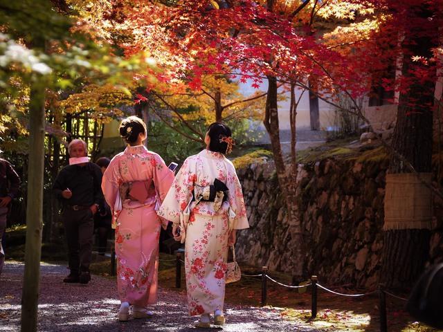Du lịch Việt giảm giá 50% nhiều tour du lịch mùa thu ở châu Âu, Nhật, Hàn Quốc... - Ảnh 2.