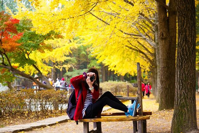Du lịch Việt giảm giá 50% nhiều tour du lịch mùa thu ở châu Âu, Nhật, Hàn Quốc... - Ảnh 3.