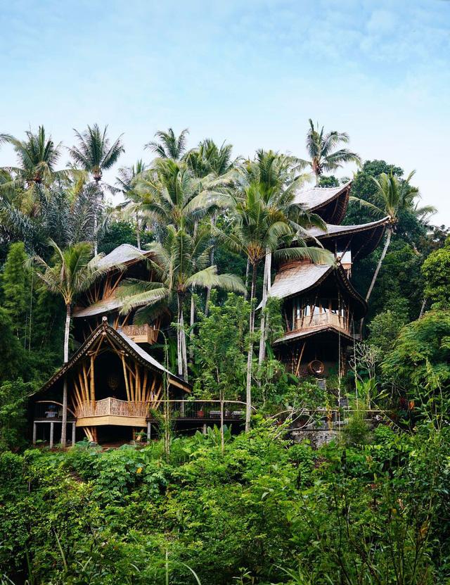 Biệt thự bằng tre độc đáo ở Bali - Ảnh 2.