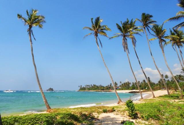 Khám phá miền Nam đảo quốc hình giọt lệ Sri Lanka - Ảnh 3.