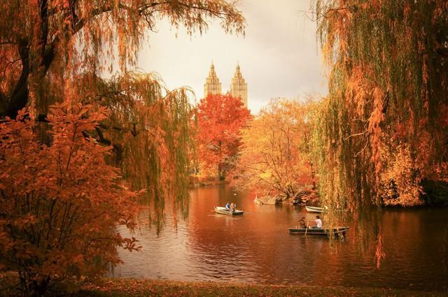 Em có nghe mùa thu ở New York - Ảnh 7.