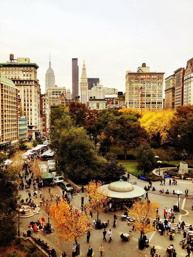 Em có nghe mùa thu ở New York - Ảnh 8.