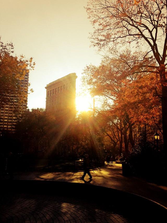 Em có nghe mùa thu ở New York - Ảnh 10.