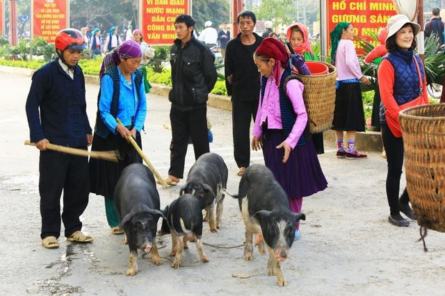 Du ngoạn Hà Giang, ngắm đồng bào đi chợ vùng cao - Ảnh 6.
