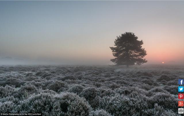 Du ngoạn qua những bức ảnh cực đẹp về thời tiết - Ảnh 13.