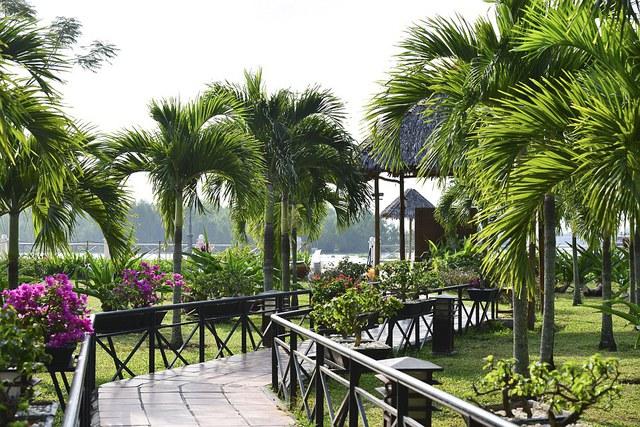 Sài Gòn nhộn nhịp, Cần Thơ yên bình, Phú Quốc đẹp mê hồn - Ảnh 6.