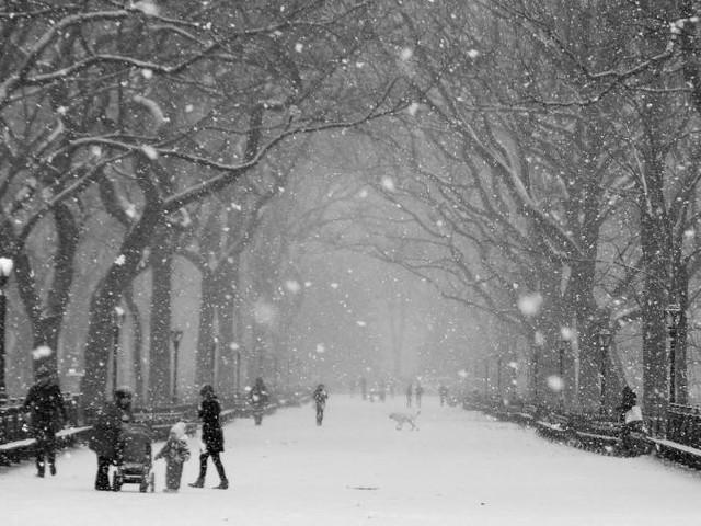 9 điểm lý tưởng nên ghé thăm khi đến New York - Ảnh 2.