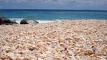 Đến Australia dạo bước trên bãi biển vỏ sò