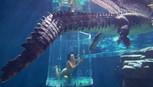 Xem clip cô gái mặc bikini bơi trong 'lồng giam tử thần'