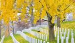 Những nghĩa trang nên đến thăm... trước khi chết! - ảnh 11