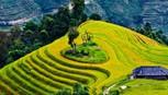 Du lịch Việt Nam cầný tưởng và sản phẩm mới