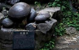 Bí ẩn vách đá 'đẻ ra trứng' ở Trung Quốc