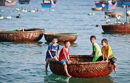 Vi vu vịnh Xuân Đài