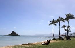 Hawaii ký sự:Oahu - tắm mình trên những dòng xanh