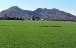 Độc đáo núi Ba Thê